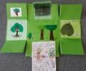 lapbook forêt